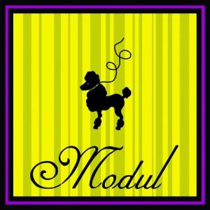 modul.jpg