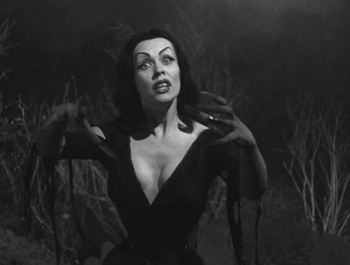 vampira500.jpg
